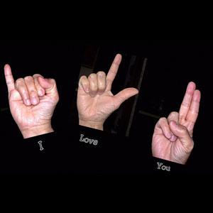 Sign language bucket list